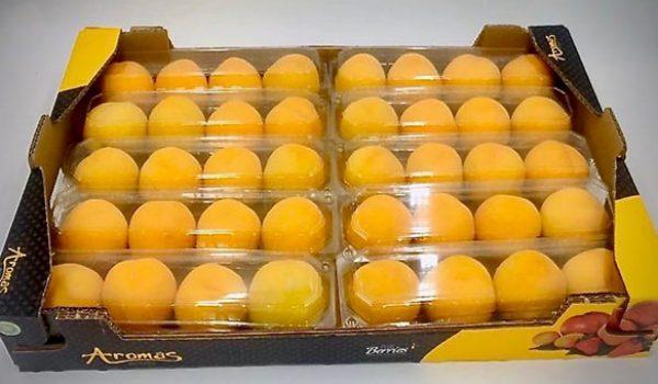 amrillos-box